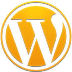 WordPress websites Miami