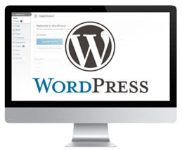WordPress Web Site Design Miami WordPress Themes WordPress Best CMS Content Mangement System WordPress Themes WordPress Miami Web Developement