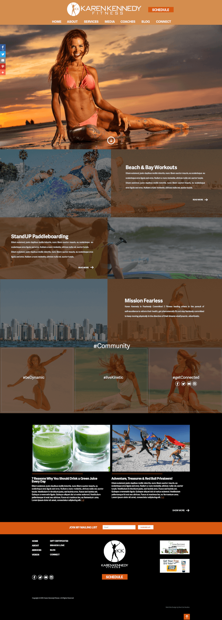 fitness-sites-wordpress-developer
